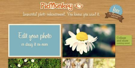 Google suggests PicMonkey as a Picnik replacement, and it was